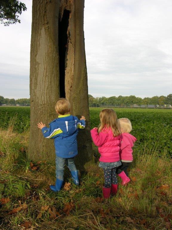 boom kinderen