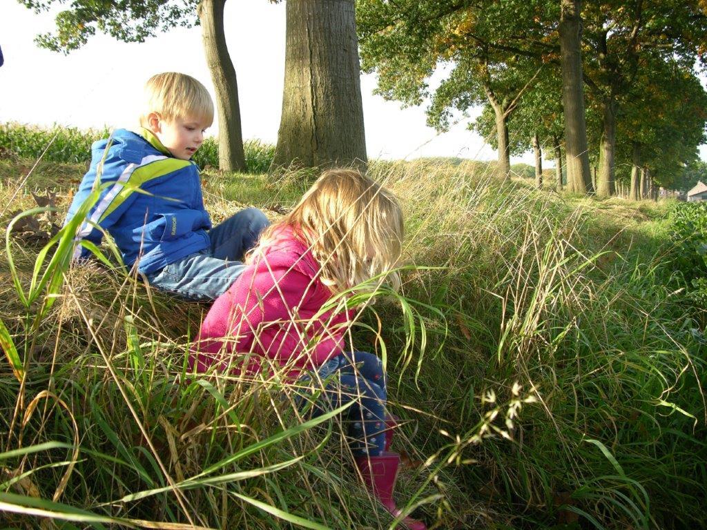 knderen gras